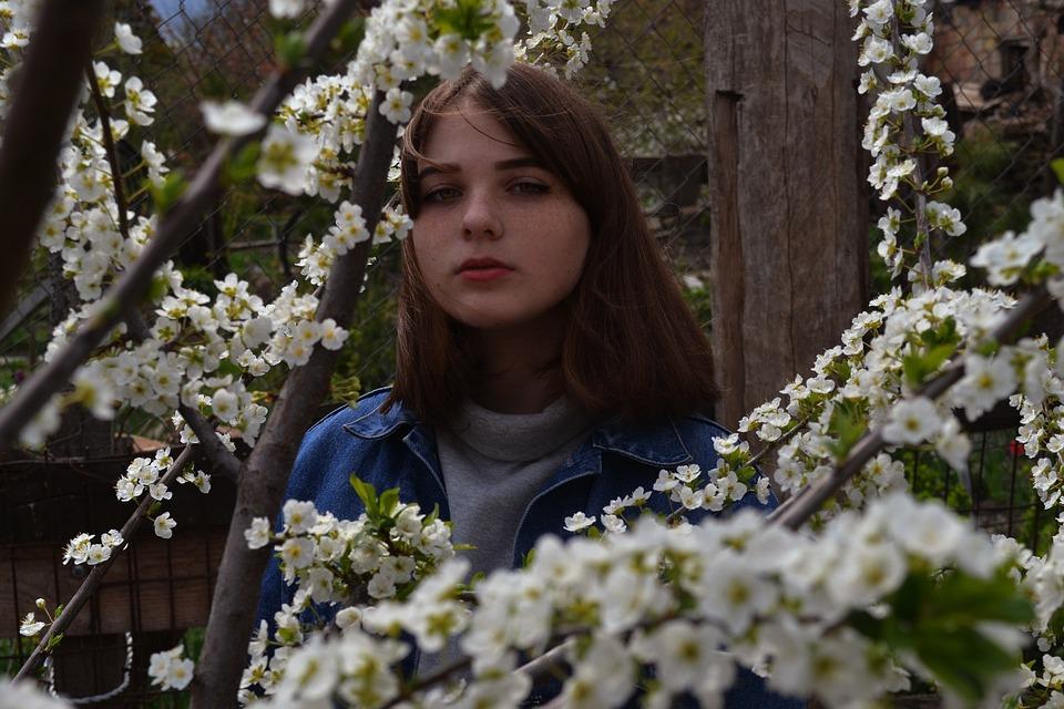 Flower, Tree, Nature, Season, Outdoors, Lovely, Plant