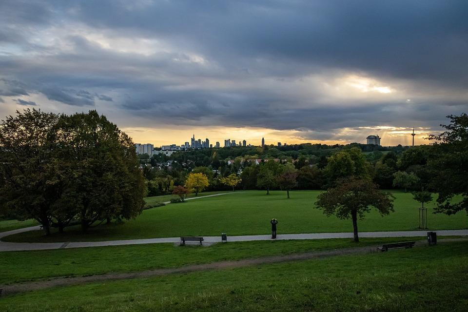 Tree, Grass, Park, Sky, Nature, Landscape, Sunset