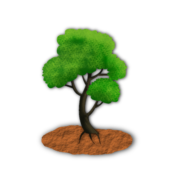 Tree, Plant, Green