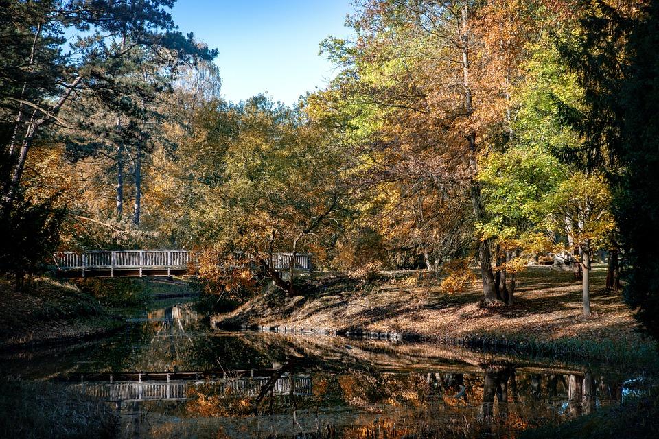 Nature, Bremen, Prieser, River, Landscape, Tree, Autumn