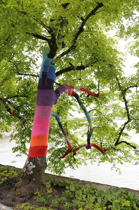 Lake Constance, Tree, Promenade, Tree Decoration