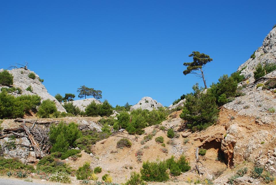 Samos, Greece, Mountain Landscape, Stones, Leave, Tree