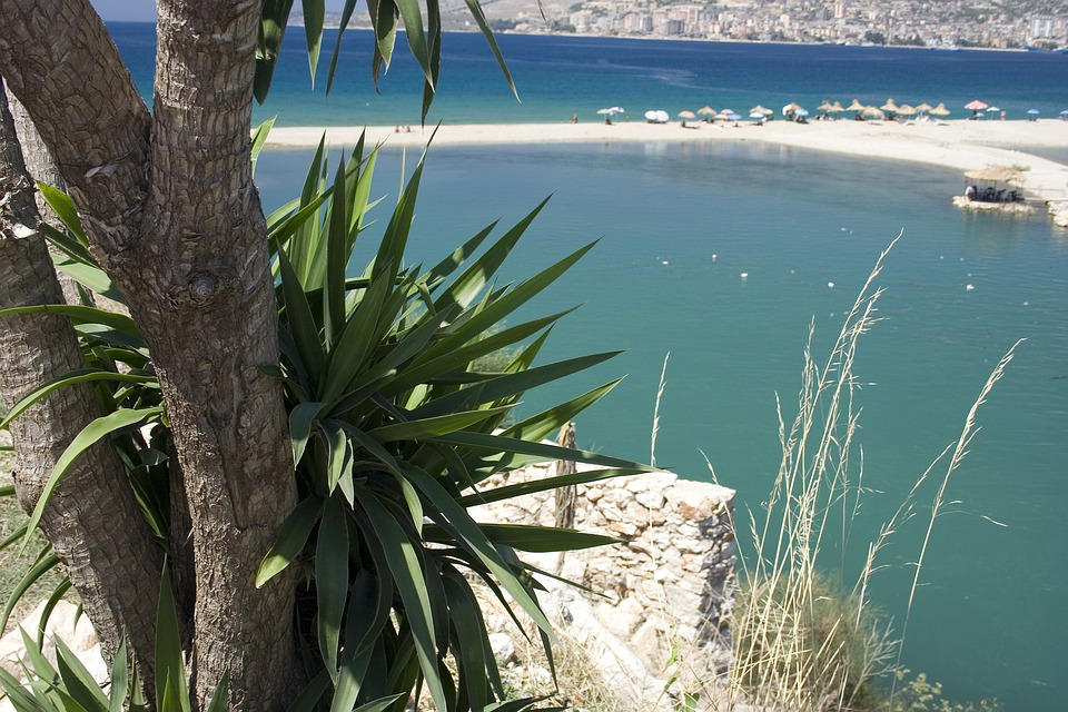 Beach, Palm, Tree, Sea, Holiday, Lagoon, Summer, Sand