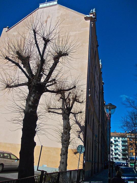 Facade, Tree Shade, Mariatorget, Stockholm