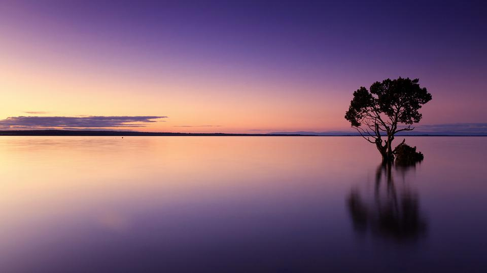 Sunset, Tree, Water, Silhouette, Nature, Landscape, Sky