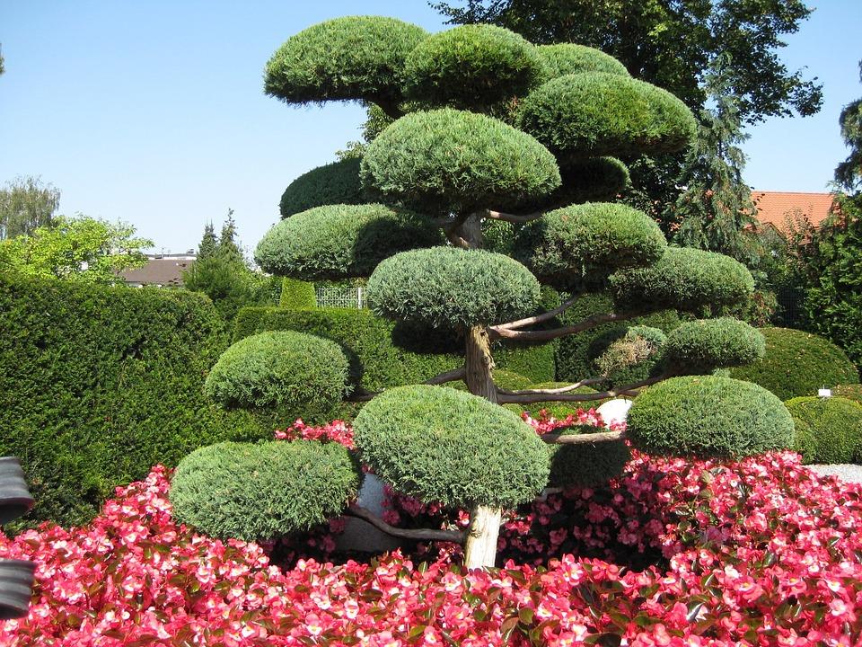 Japanese Garden, Green, Tree, Bushes, Spring, Garden