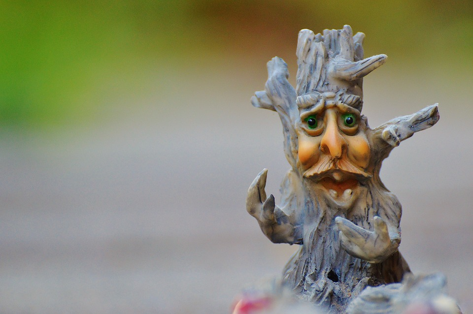 Tree, Face, Mystical, Funny, Tree Stump, Creepy, Weird