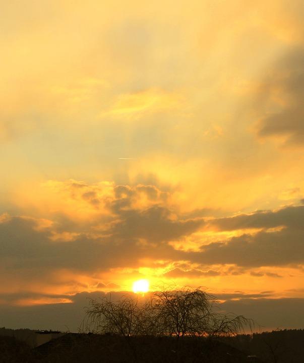 Sunset, Abendstimmung, Sunbeam, Tree