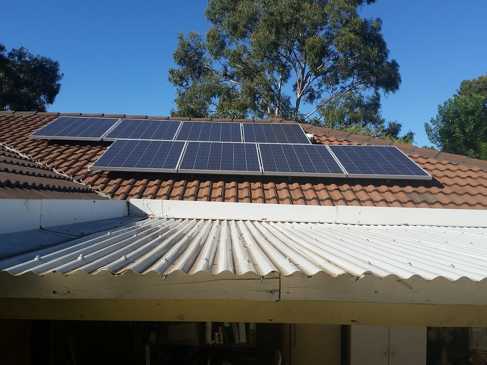 Solar Panels, Photovoltaic Cells, Tiles, Roof, Tree