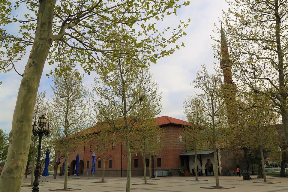 Cami, Minaret, Tree, Travel, Sky, Masjid, Religion