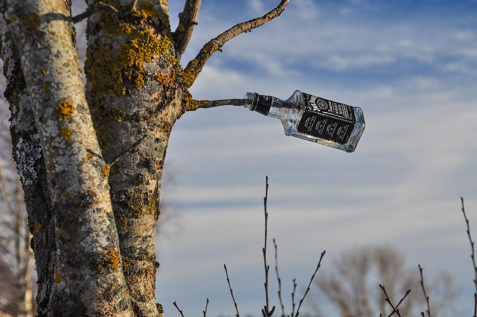 Waste Disposal, Bottle, Tree, Disposal, Pollution