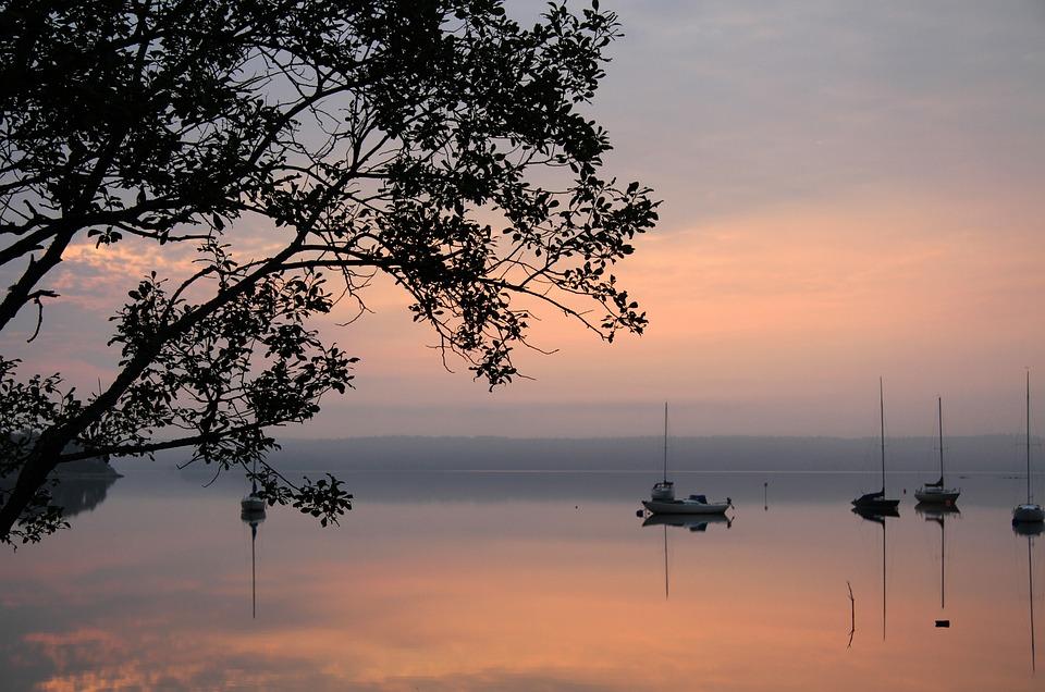Lake, Morning, Pink, Tree, Boats, Mist, Water