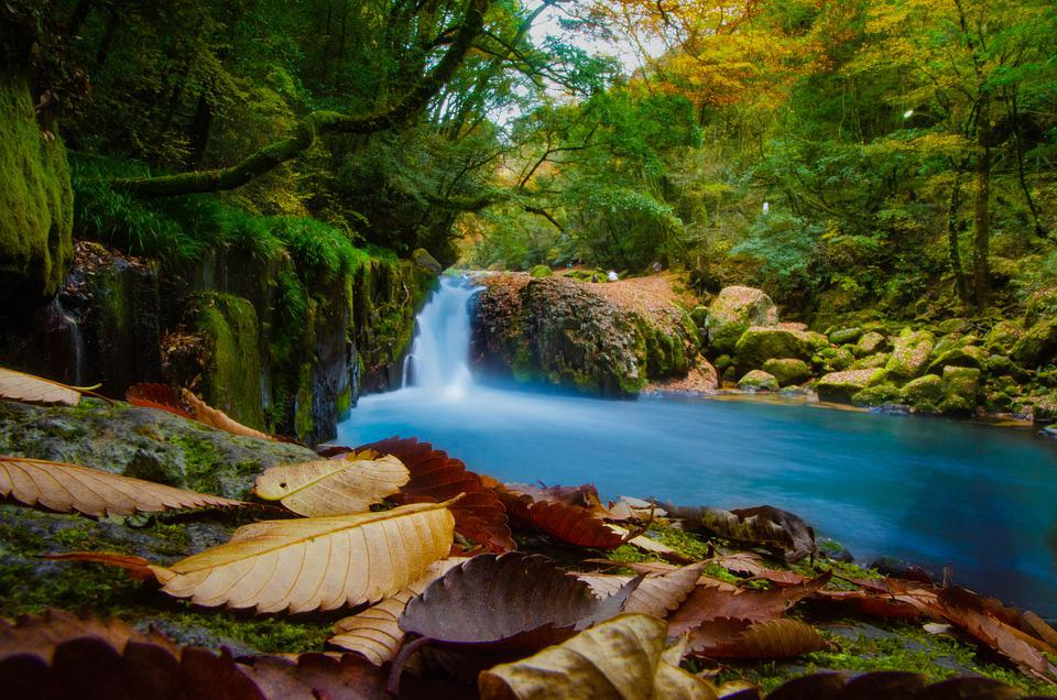 Waterfall, Stream, Tree, Spring, Autumn, Forest, Water