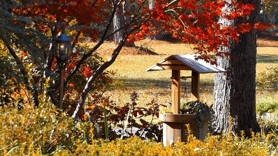 Fall, Tree, Leaf, Season, Maple, Wishing Well, October