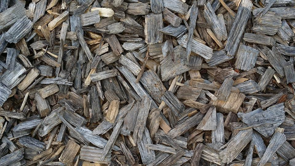 Tree, Wood Chips, Wood Background
