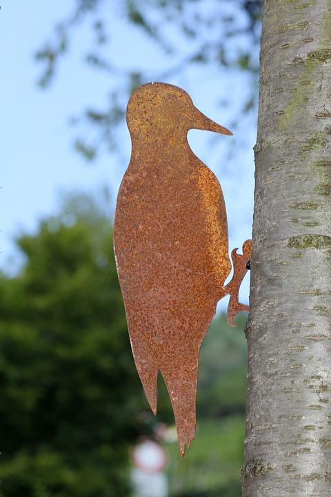 Woodpecker, Tree, Nature, Bird