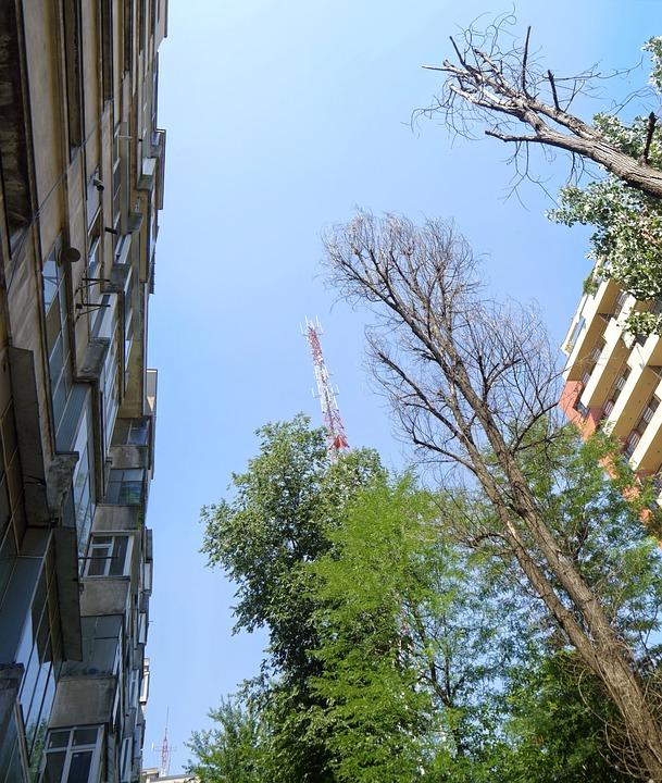 Landscape, Urban, Building, Apartments, Trees