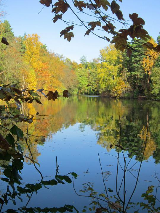 Lake, Autumn, Mirroring, Leaves, Water, Trees, Lighting