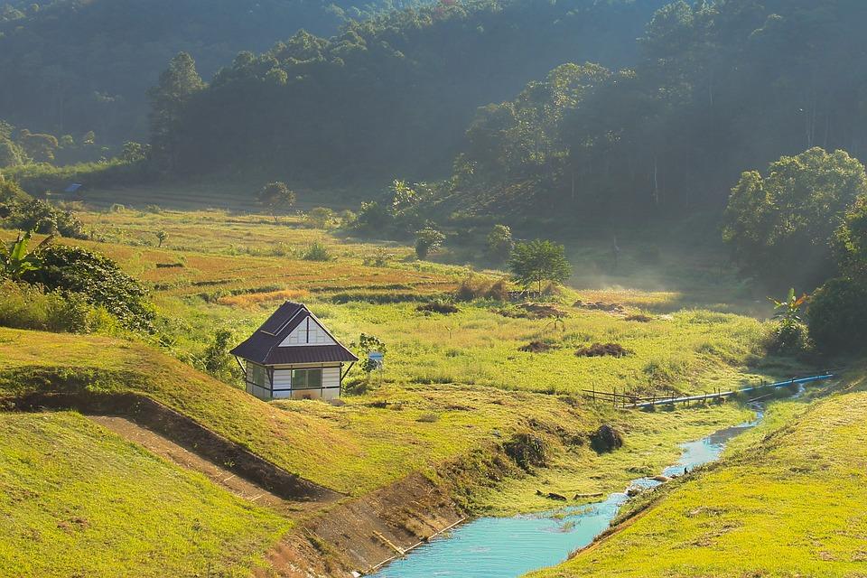Cabin, Cottage, Forest, Trees, Bridge, River, Nature