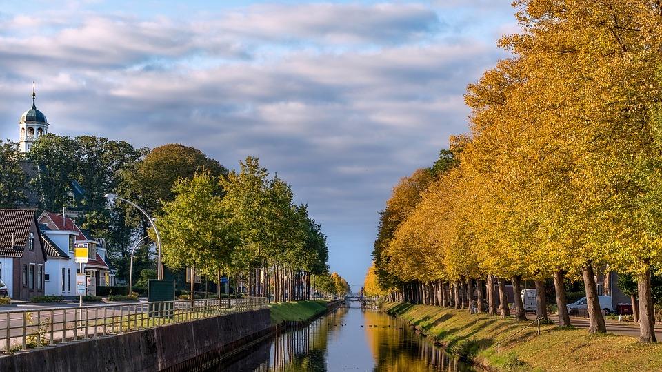 Canal, Trees, Buildings, Estuary, Creek, Town, Village