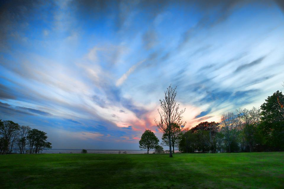 Park, Trees, Grass, Skyscape, Cloudscape, Landscape