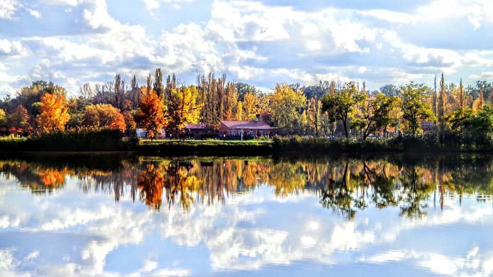 Color, Autumn, Trees