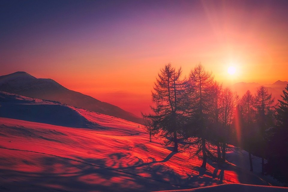 Sunset, Mountains, Trees, Silhouettes, Conifers