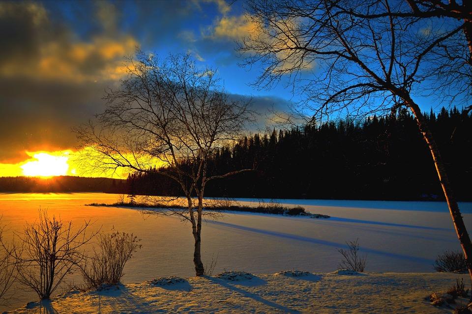 Winter Landscape, Sunset, Trees, Evening, Snow