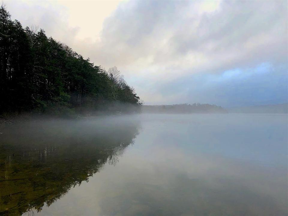 Lake, Mist, Fog, Sunset, Trees, Park, Rural, Water