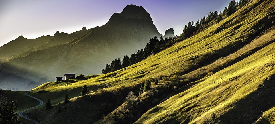 Mountain Range, Hills, Highlands, Trees, Conifers