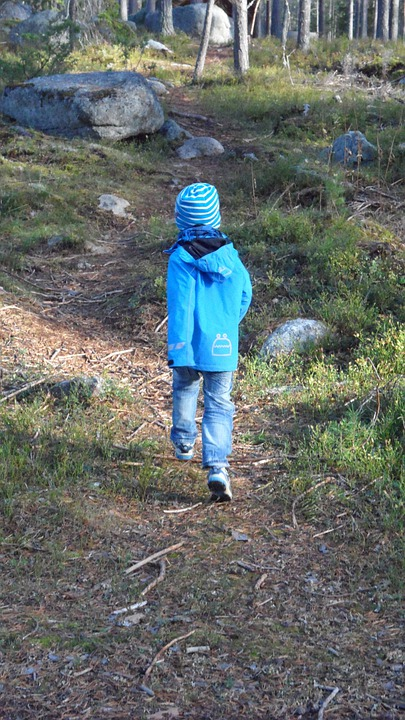 Boy, Forest, Little Boy, Trees, Infant, Kid, Running