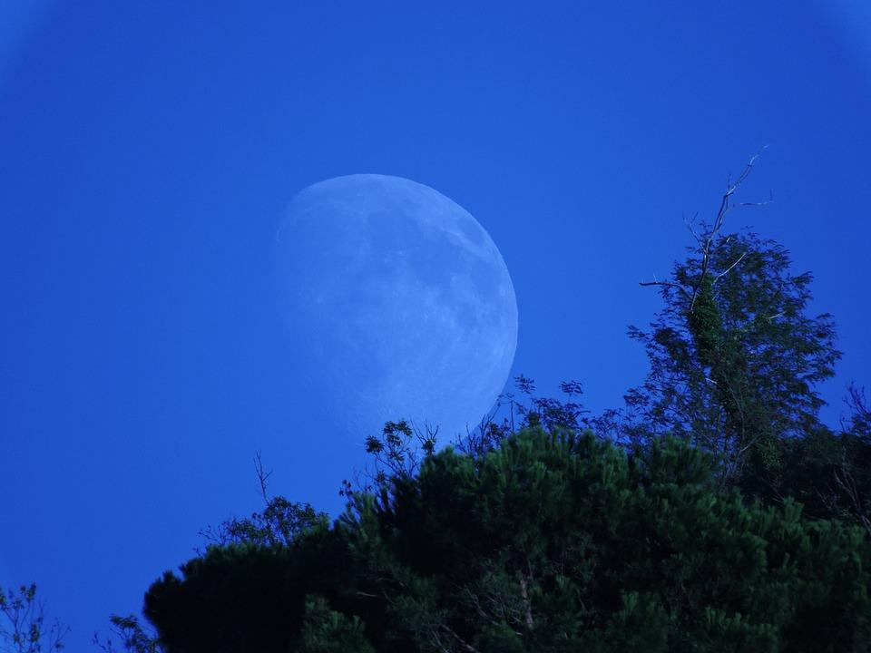 Luna, Mountain, Trees, Green, Sky