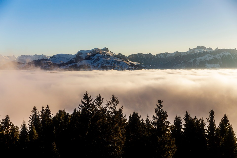 Mountains, Fog, Trees, Landscape, Sky, Clouds, High