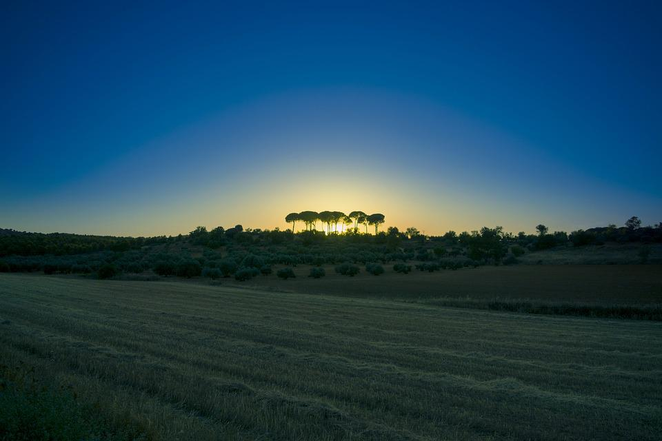 Rural, Landscape, Nature, Trees, Sky, Panorama - Free Photo Trees Nature Rural Sky Landscape Panorama - Max Pixel