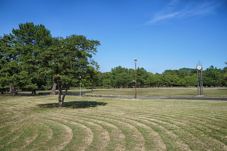 Toyohashi, Japan, Park, Trees, Nature, Outside, Grass