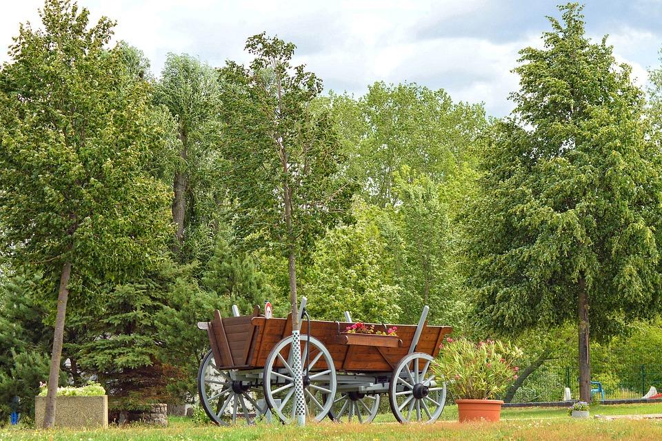 Cart, Trees, Landscape, Prettin