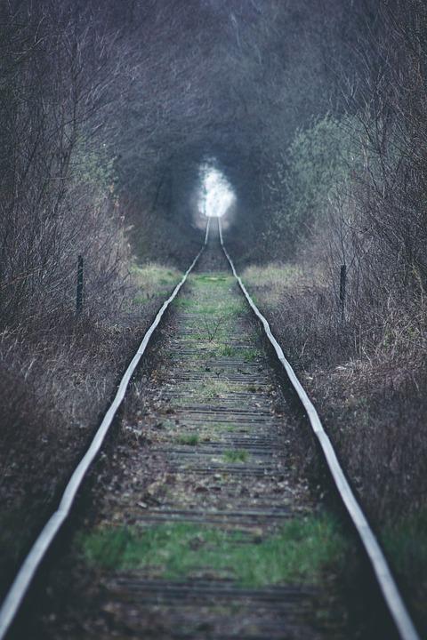 Trees, Tracks, Woods, Railroad, Railway, Forest, Train