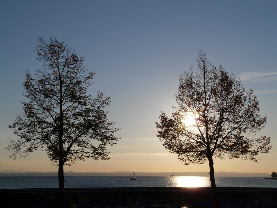 Sunset, Trees, Water, Lake, Sun, Romance, Sailing Boat