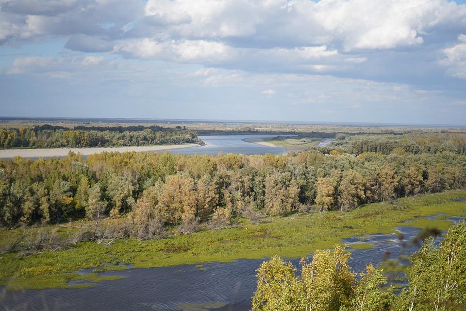 Pond, Swamp, Autumn, Siberia, Trees, Landscape, Grass