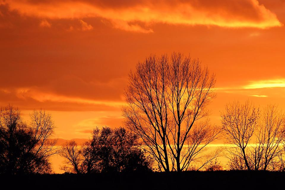 Sunset, Afterglow, Evening Sky, Trees, Silhuette