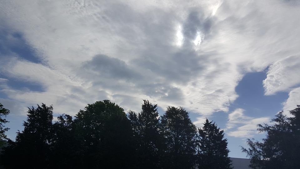 Cloud, Sky, Trees