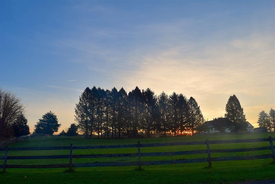 Sunset, Trees, Silhouette, Sky, Sun, Landscape