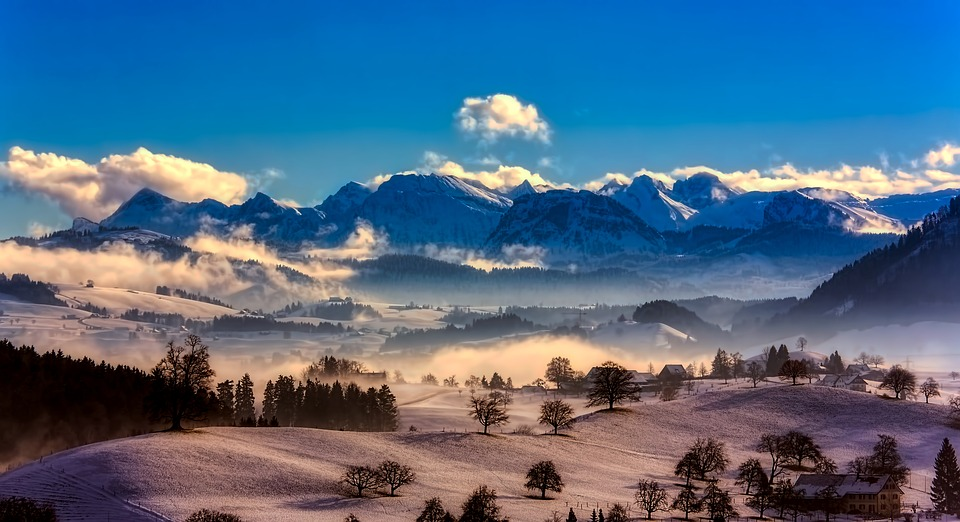 Alps, Snow, Panorama, Mountains, Trees, Conifers