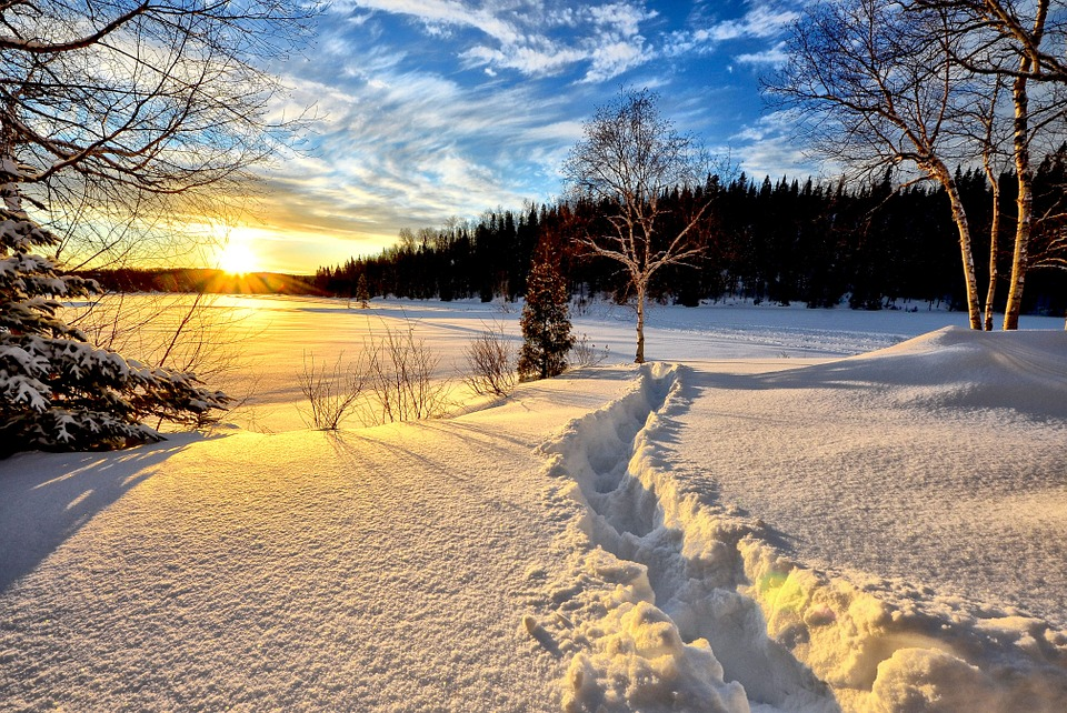 Winter Landscape, Sunset, Cold, Snow, Trees, Nature