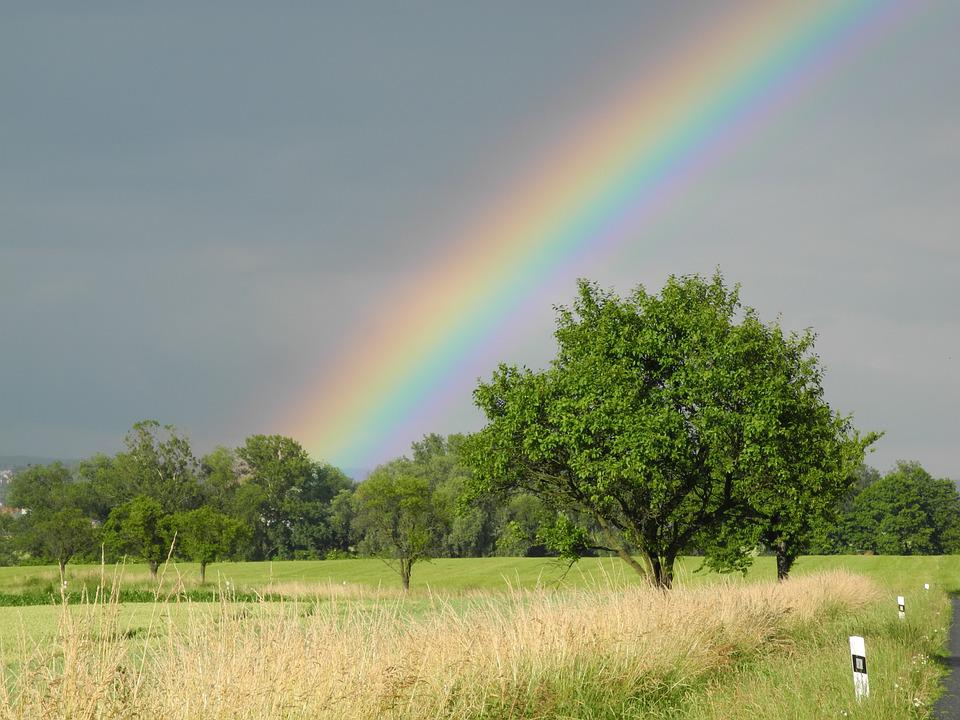 Rainbow, Heaven, Trees, Nature, Sky, Landscape, Summer