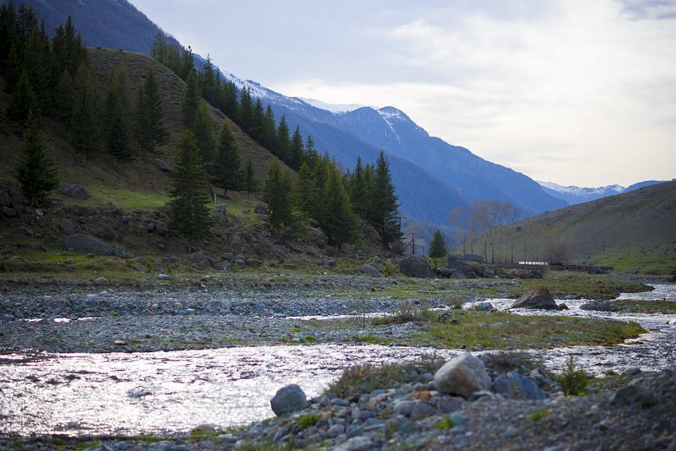 Mountains, Creek, River, Nature, Trees, Travel, Stones