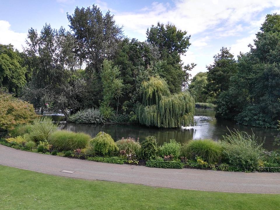 Park, London, United Kingdom, Water, Trees