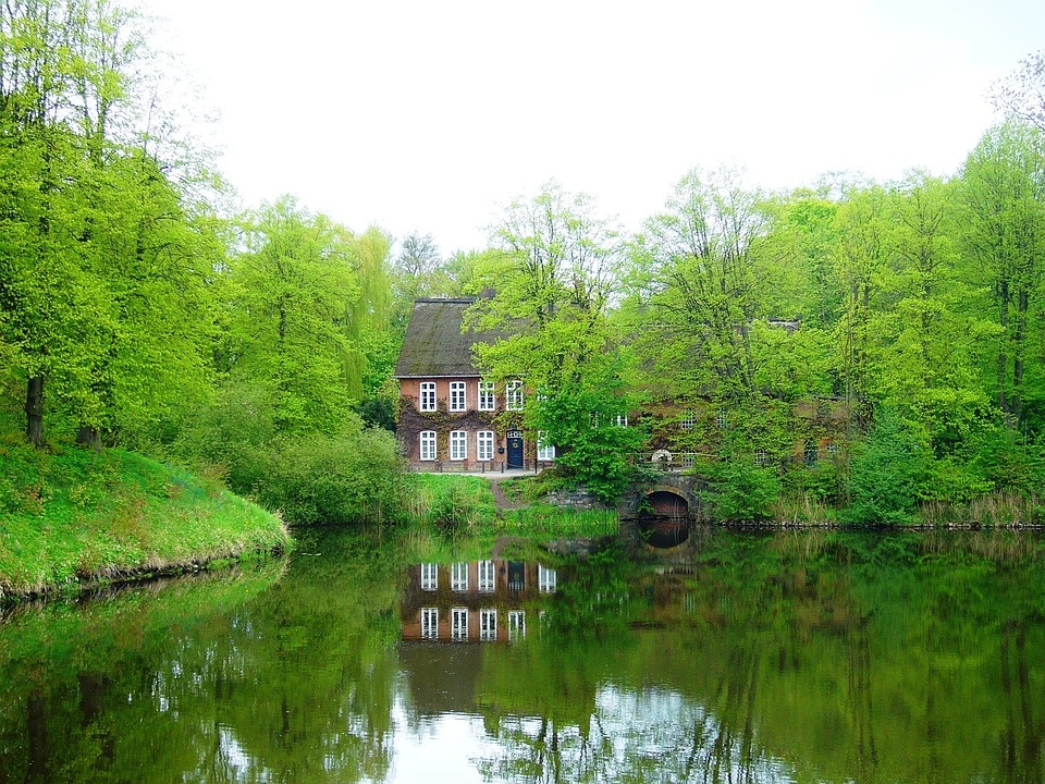 Water, Mill, Trees, Spring, Landscape, Wilderness