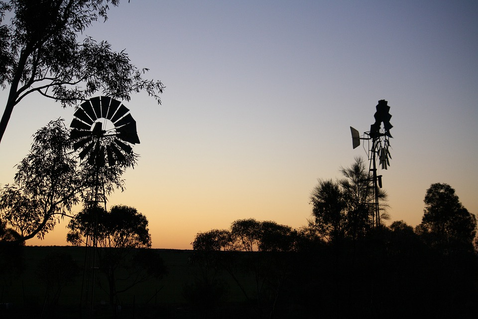 Windmill, Windmills, Silhouette, Trees, Branches, Rural