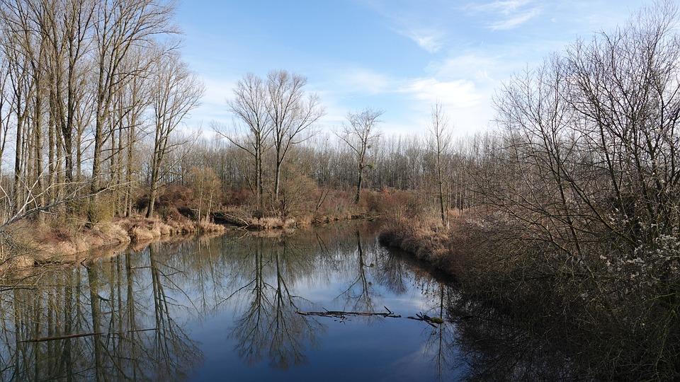Hay-field, River Landscape, Trees, Winter